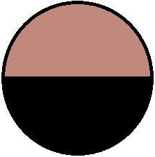 rosa/negro